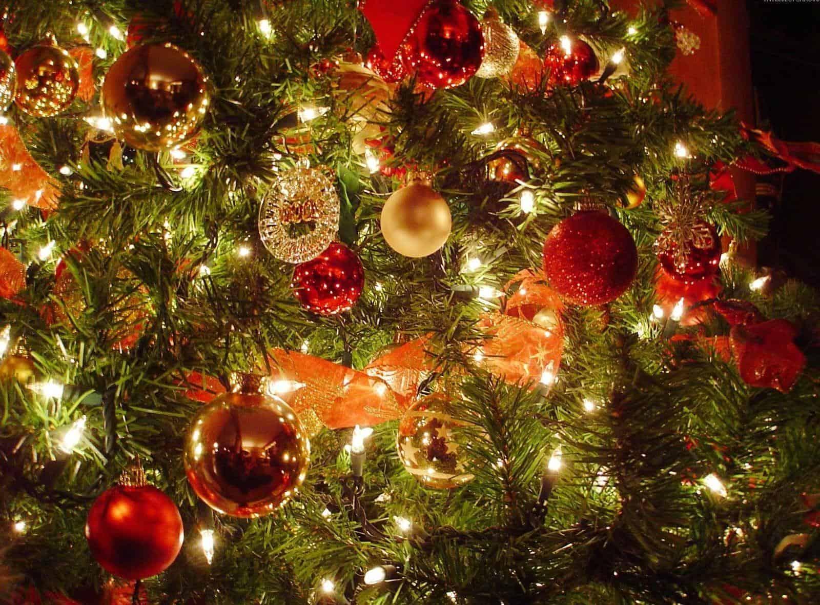Gewijzigde openingstijden tijdens de feestdagen!